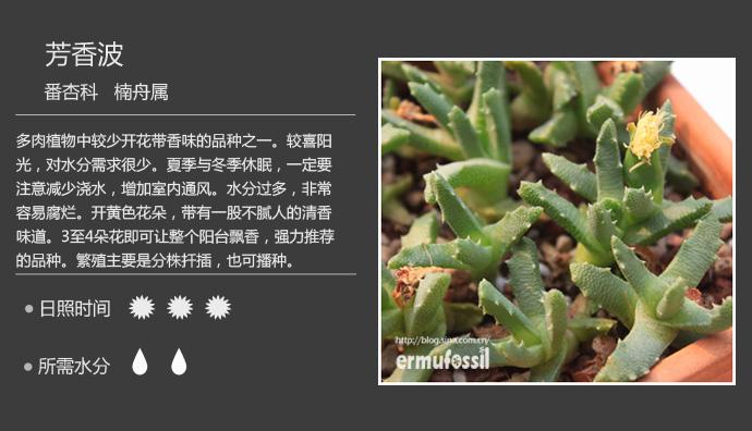 fanxinke (5).jpg