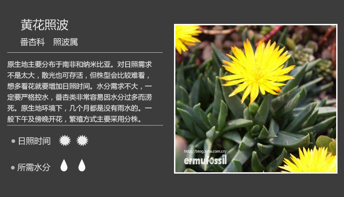 fanxinke (6).jpg